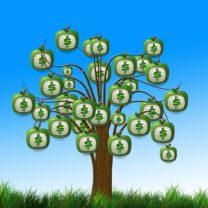 Grüne Aktienfonds können Rendite bringen